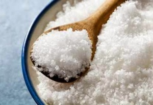 bahan pengawet makanan garam