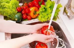 pembekuan buah-buahan dan sayuran