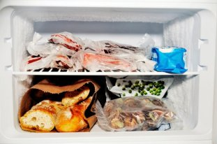 makanan frozen food