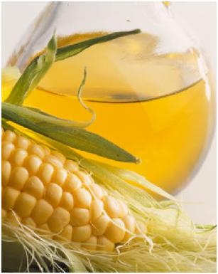 pengolahan minyak jagung