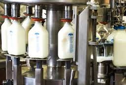 pasteurisasi susu
